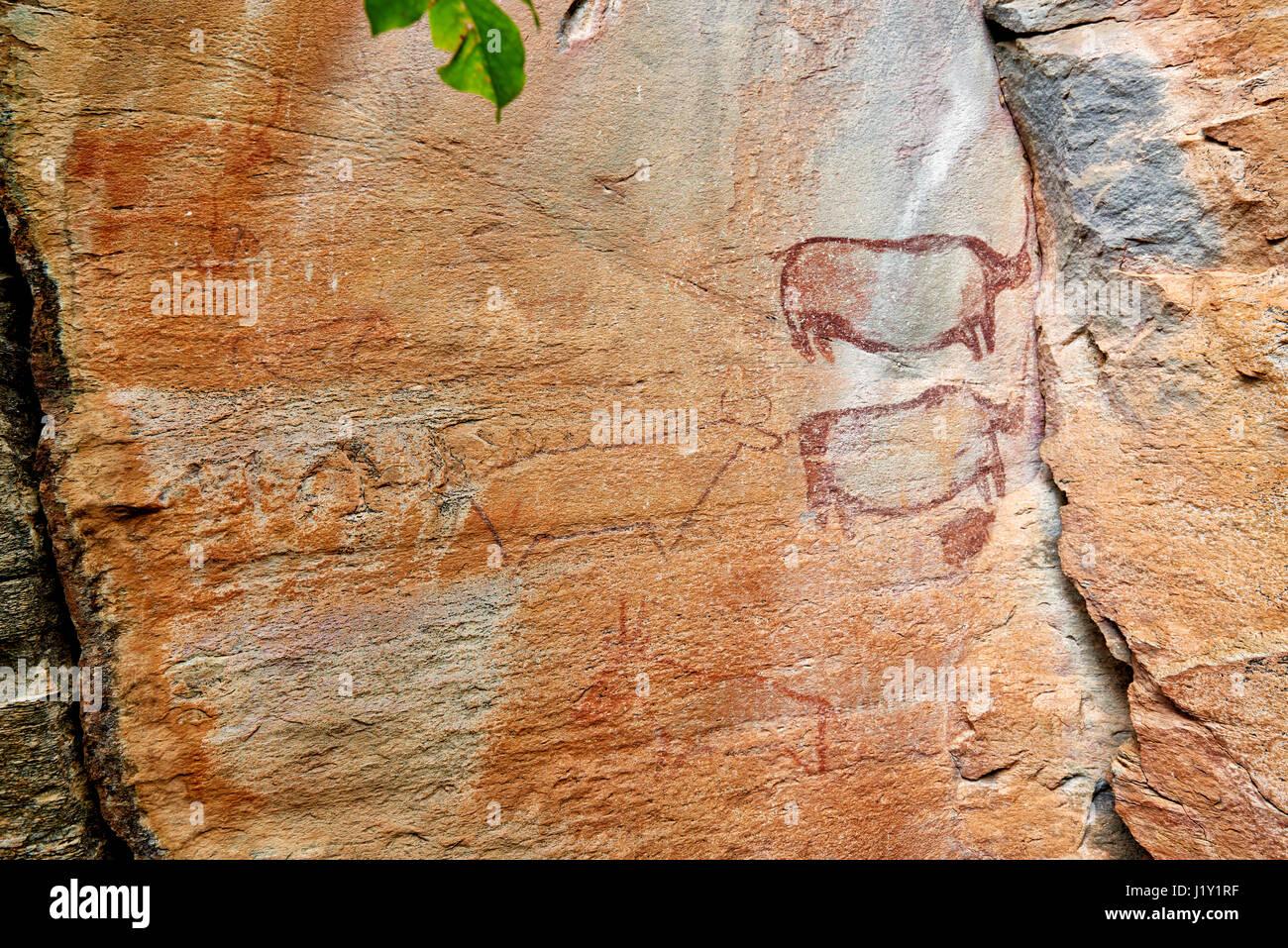 Rhinos and a cow-like figure, Rock art, ancient San paintings, Tsodilo Hills, UNESCO world heritage site, Botswana, - Stock Image