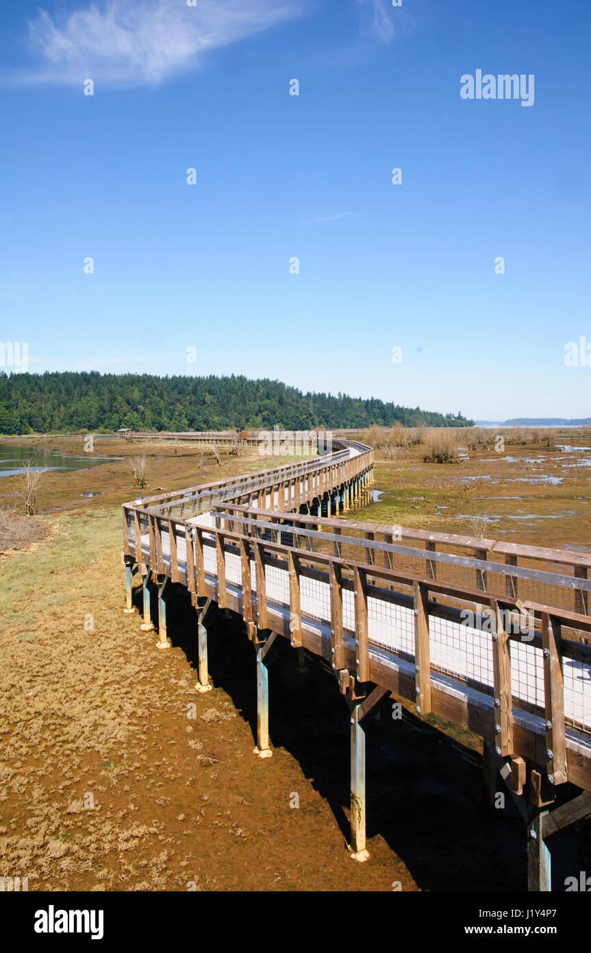 Walkway viewing platform, Nisqually National Wildlife refuge, Washington, USA - Stock Image