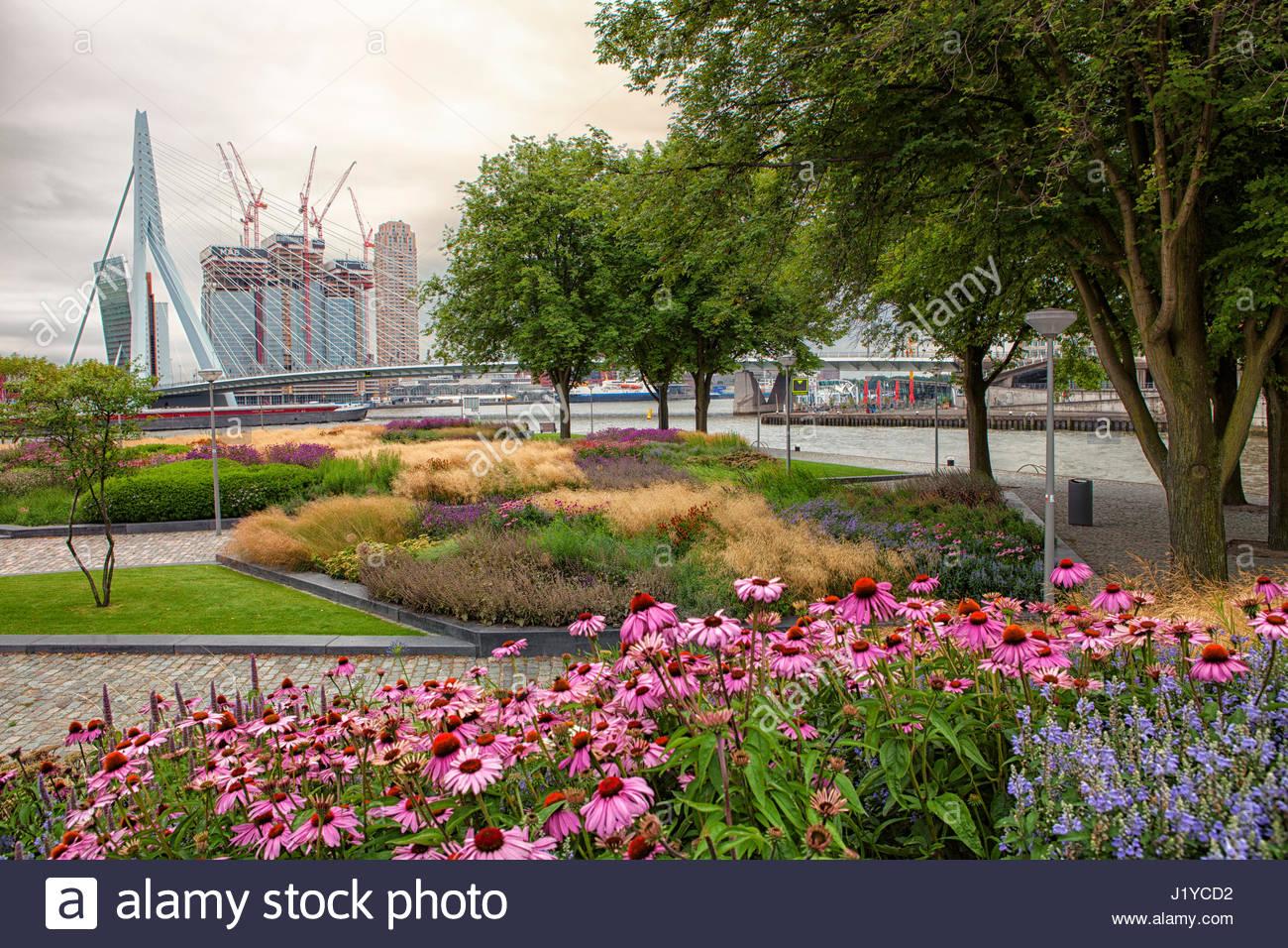 Rotterdam City Garden Design By Piet Oudolf Stock Photo
