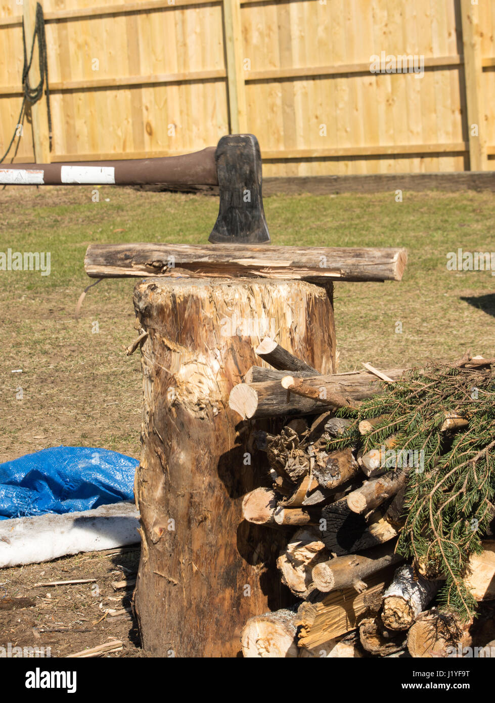 axe splitting camp fire wood on a stump. - Stock Image