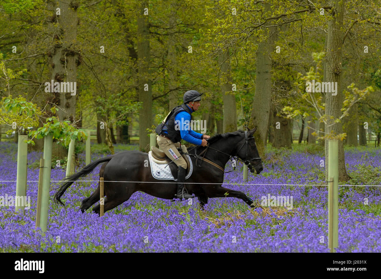 Henley on Thames, UK.  23 April 2017.  Participants take part in the Hambleden Horse Trials.  Celebrating its 20th - Stock Image