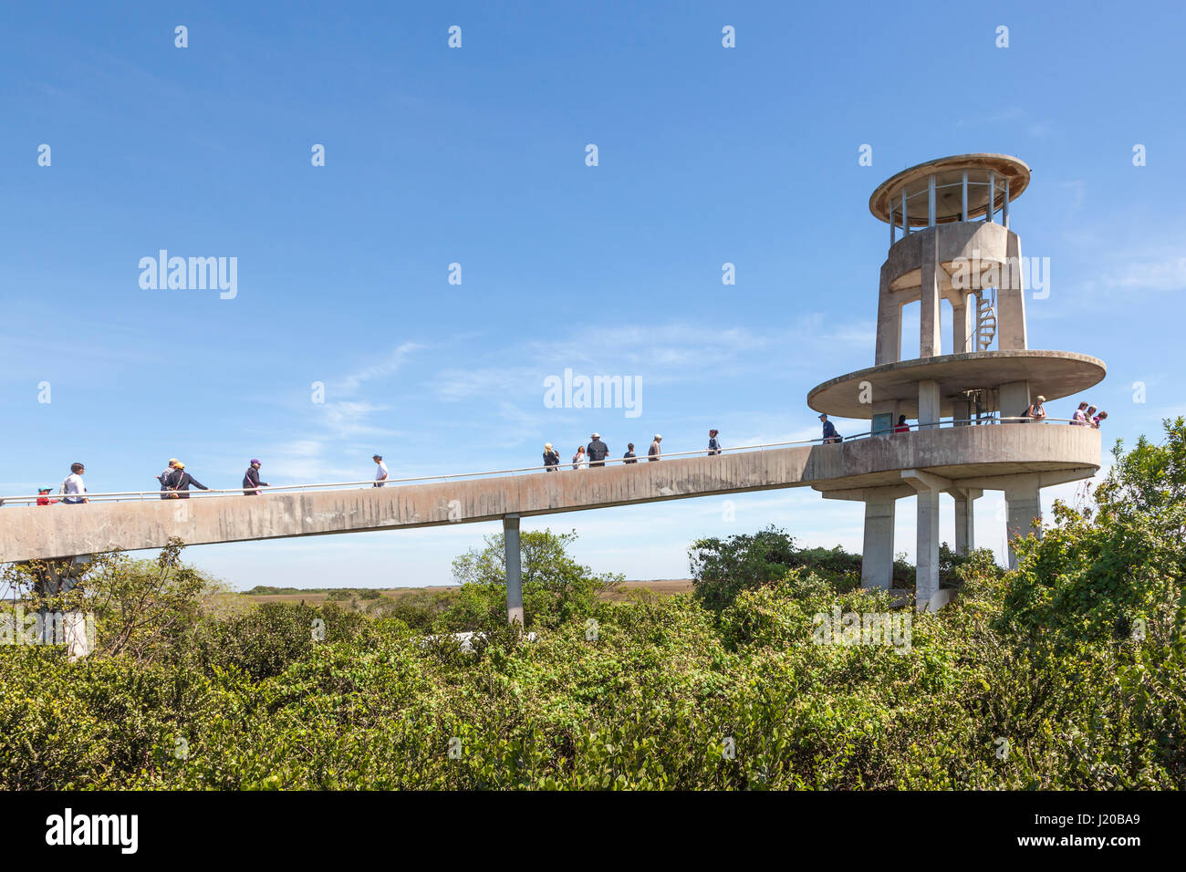 Miami, Fl - March 15, 2017: The Shark Valley Observation Tower in the Everglades National Park. Florida, United - Stock Image