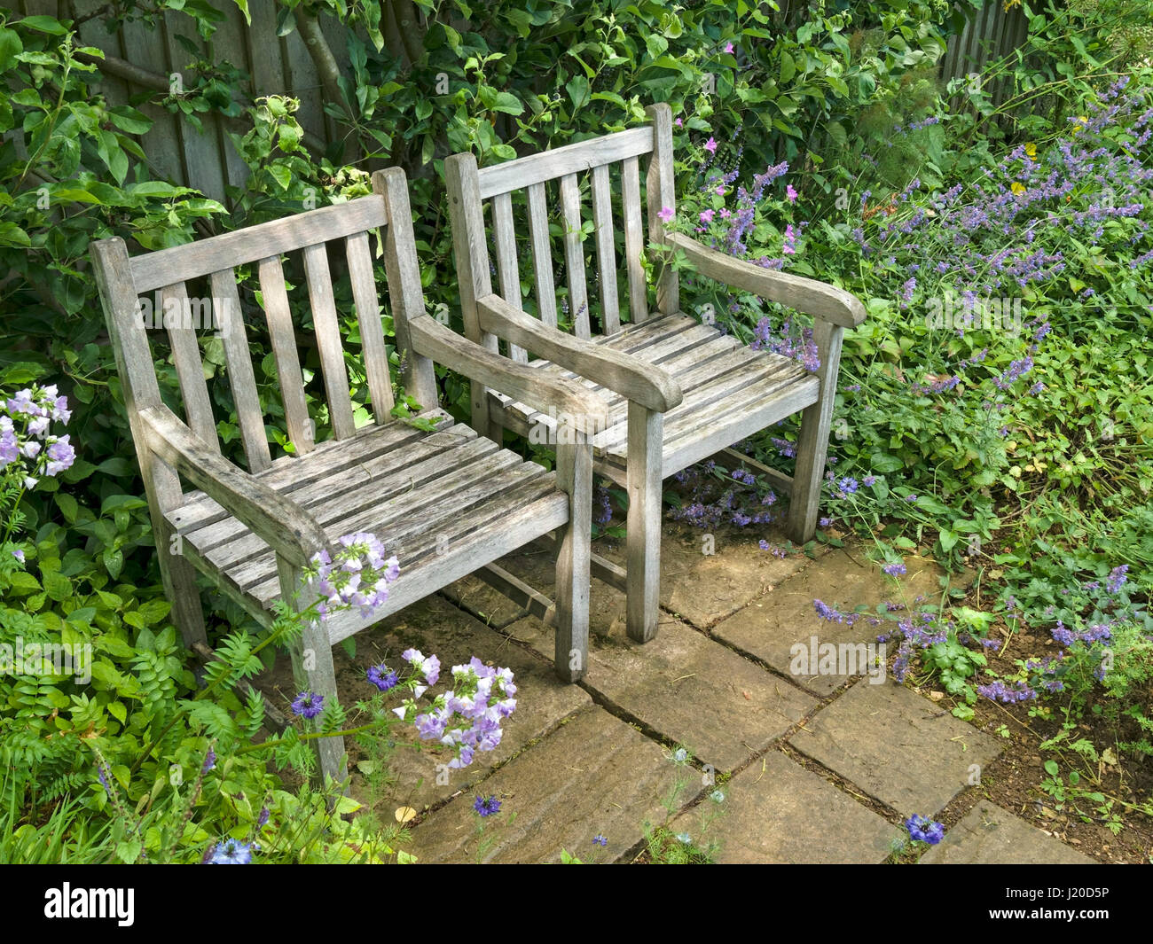 Row of two wooden garden chairs on small slabbed patio, Barnsdale