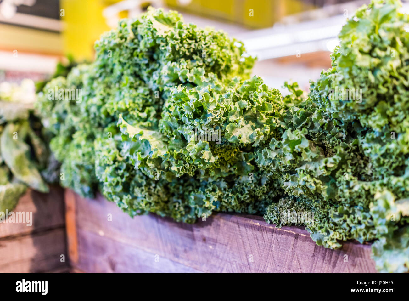Closeup of kale greens in market store - Stock Image