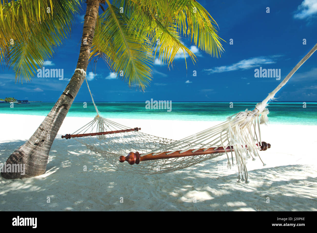 Beach Hammock Hanging On A Palm Tree On The Maldives Stock Photo