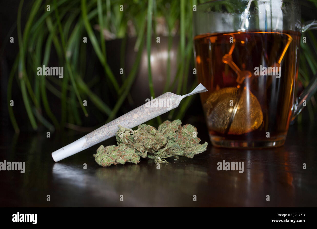 closeup of rolled marijuana weed joint and buds on wooden background, with cup of rooibos tea Stock Photo