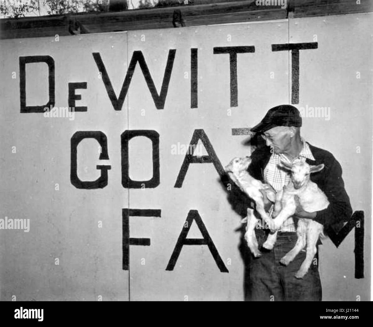E.B. DeWitt holds the goats from his farm - Stock Image