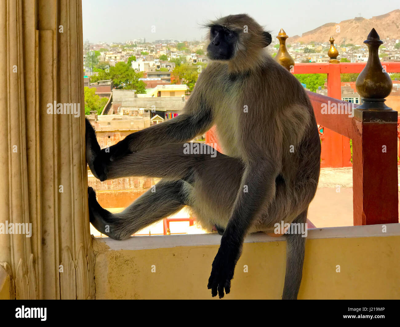 Major Tourist Spots in Jaipur, Rajasthan, India Stock Photo