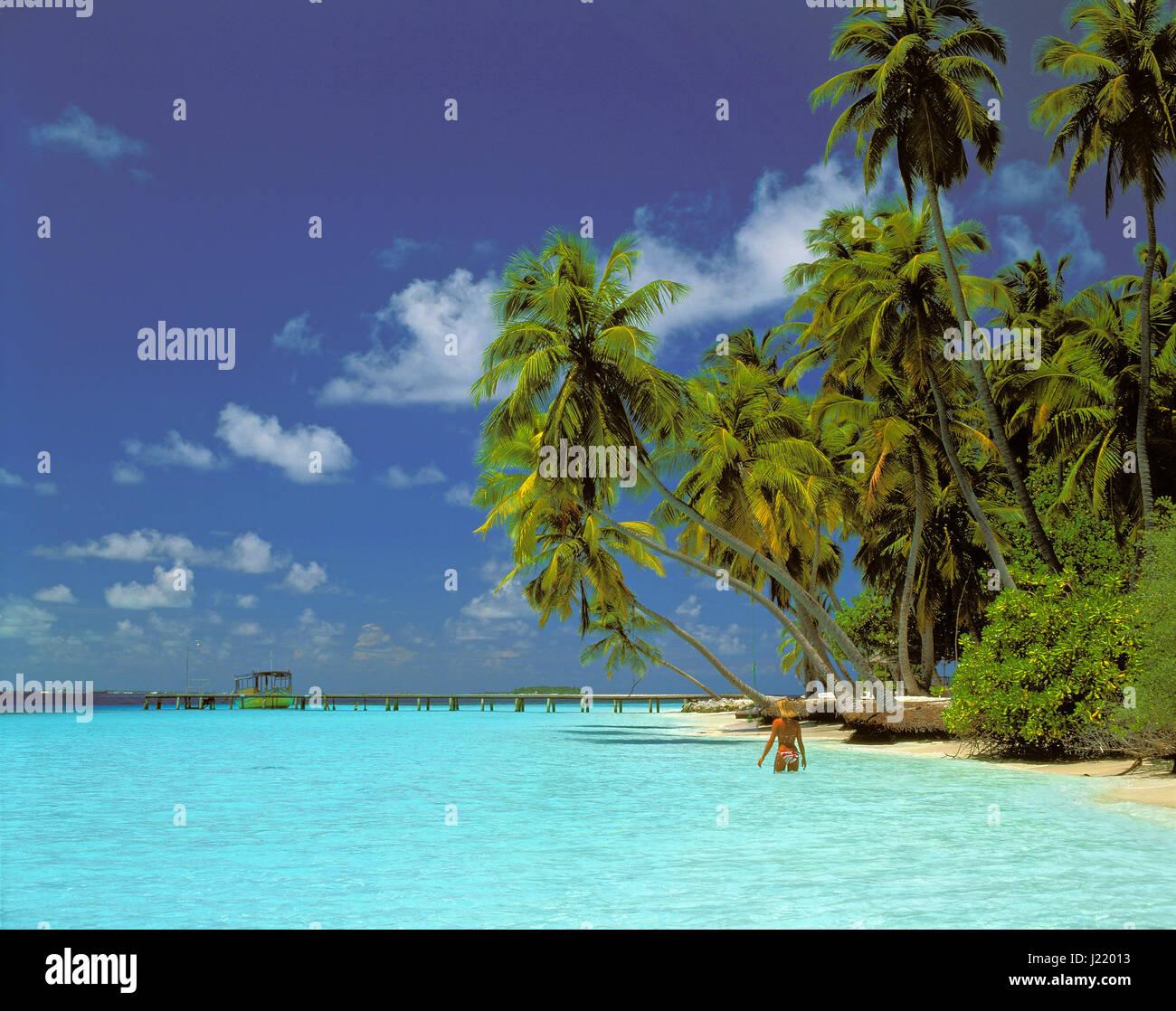 Kuda Bandos Island, Maldives Republic. - Stock Image