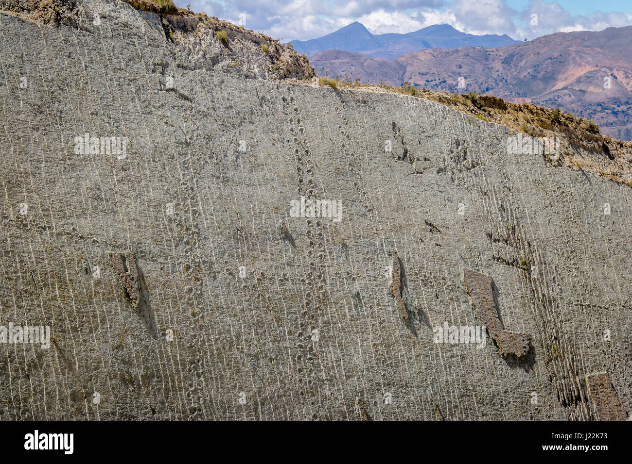 Dinosaur tracks on Cal Orcko Wall - Sucre, Bolivia - Stock Image