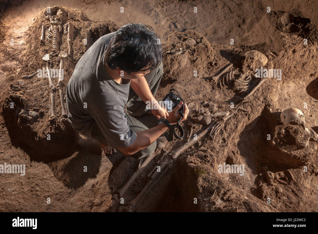 An Indonesian archaeologist taking photos of the prehistoric hominid skeletons on Gua Harimau excavation site, Sumatra, - Stock Image