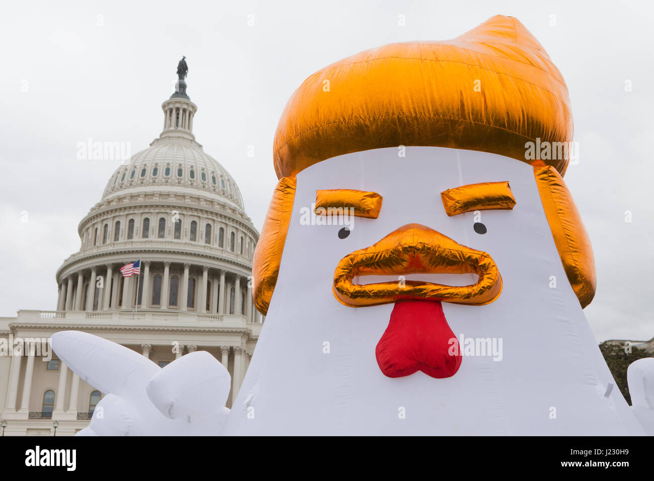 Trump Chicken at protest rally - Washington, DC USA Stock Photo