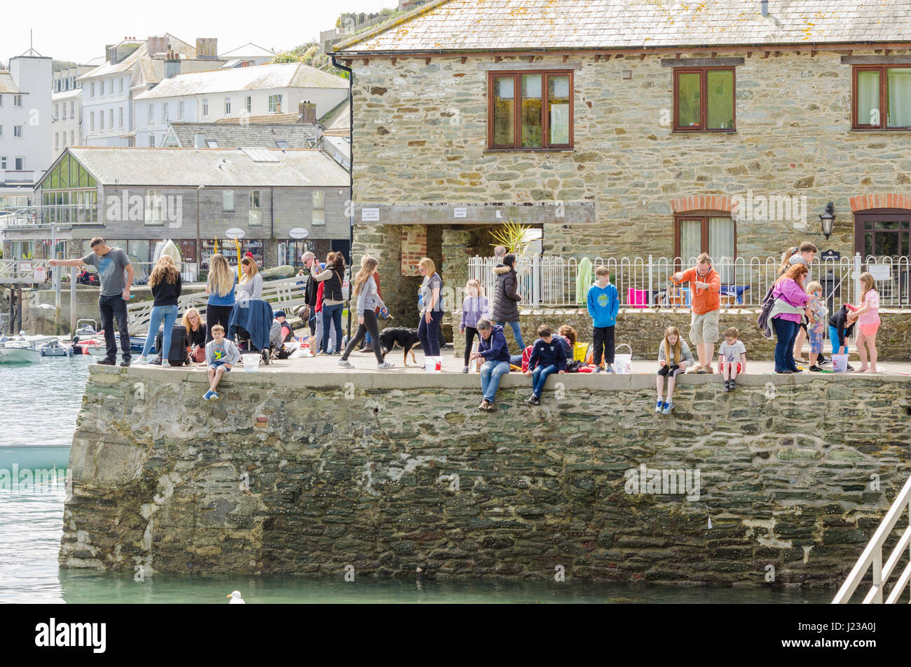 Children and adults crabbing on Victoria Quay in Salcombe, Devon - Stock Image