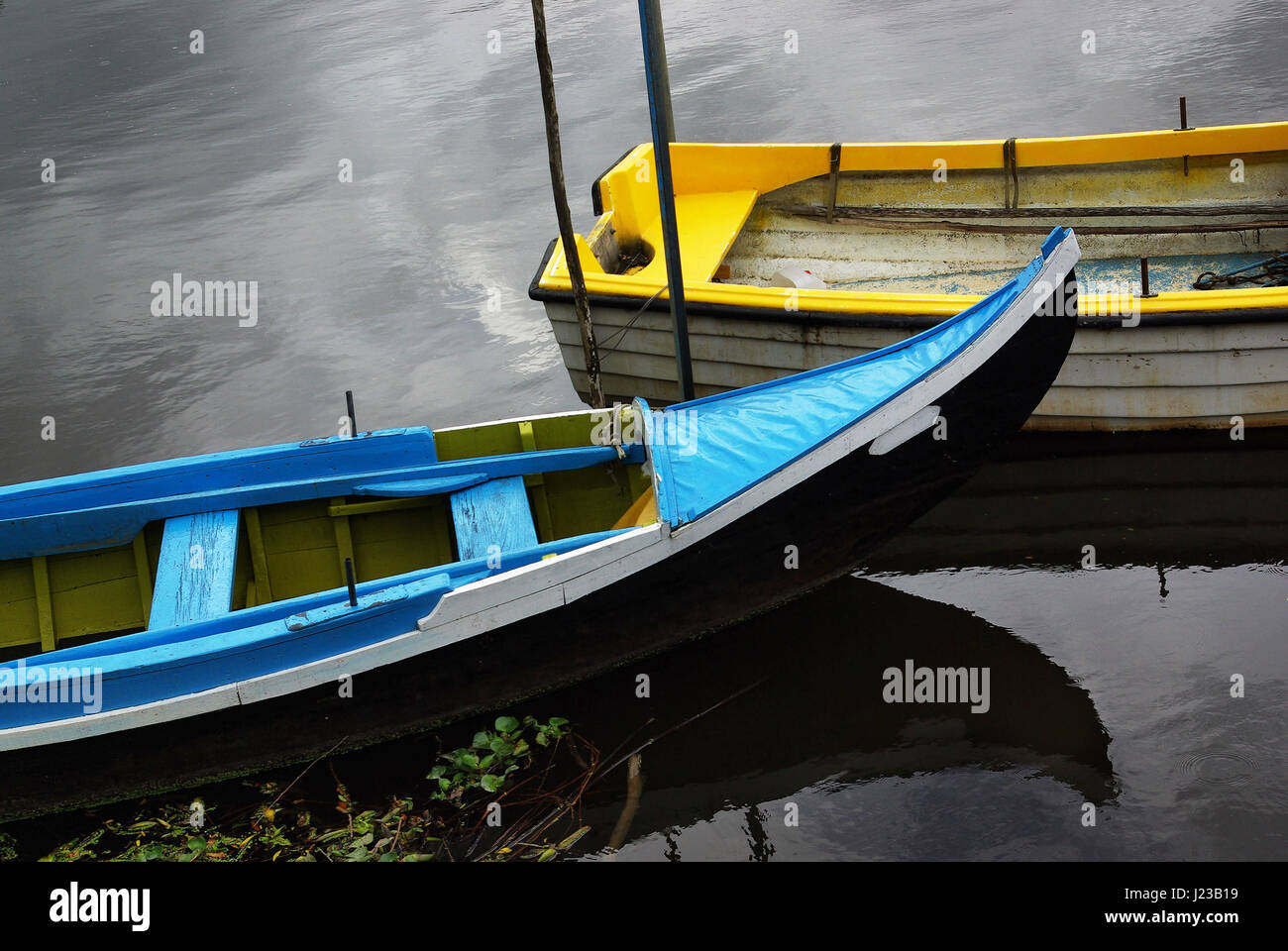 Two Portuguese blue and yellow row boats anchored in a calm river shore - Stock Image