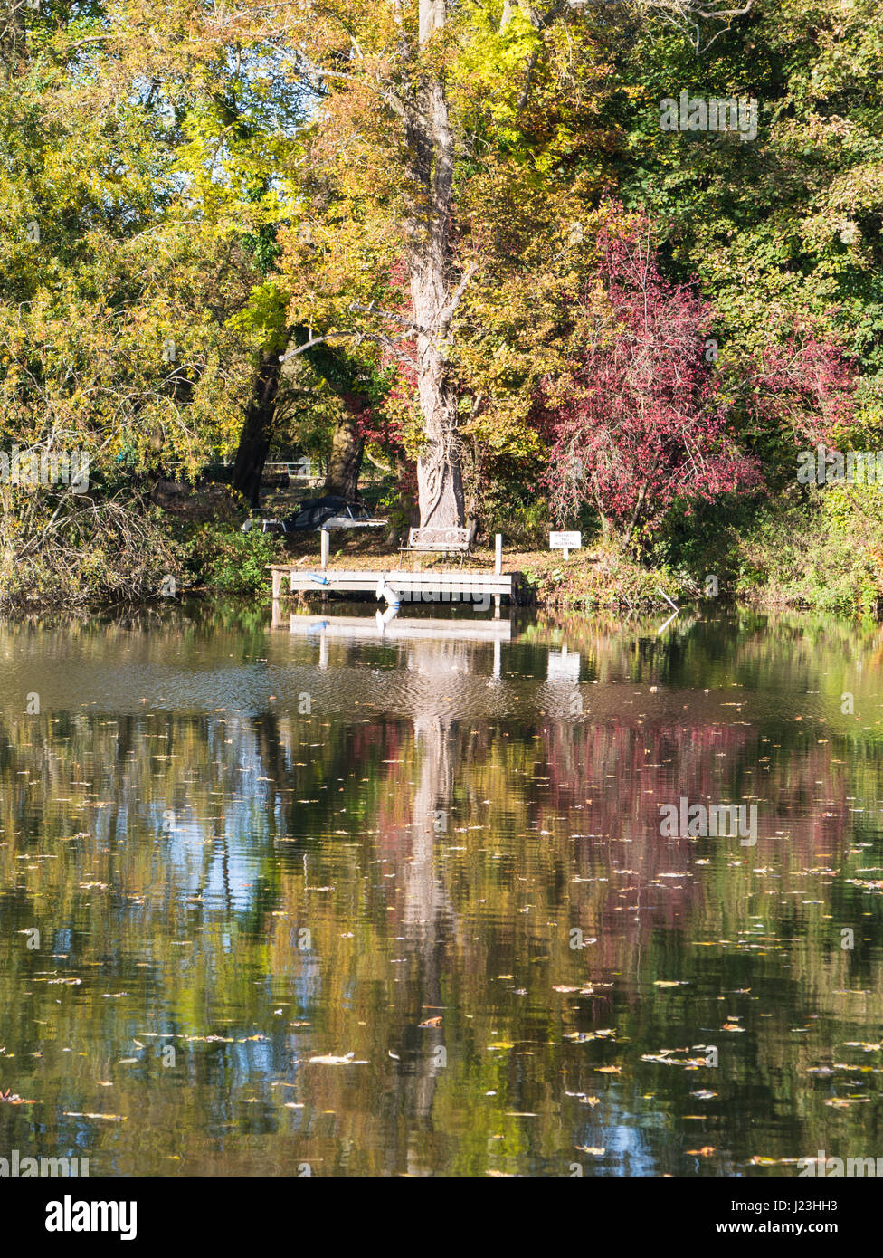 Bench, Pangbourne-on-Thames, Reading, Berkshire, England Stock Photo