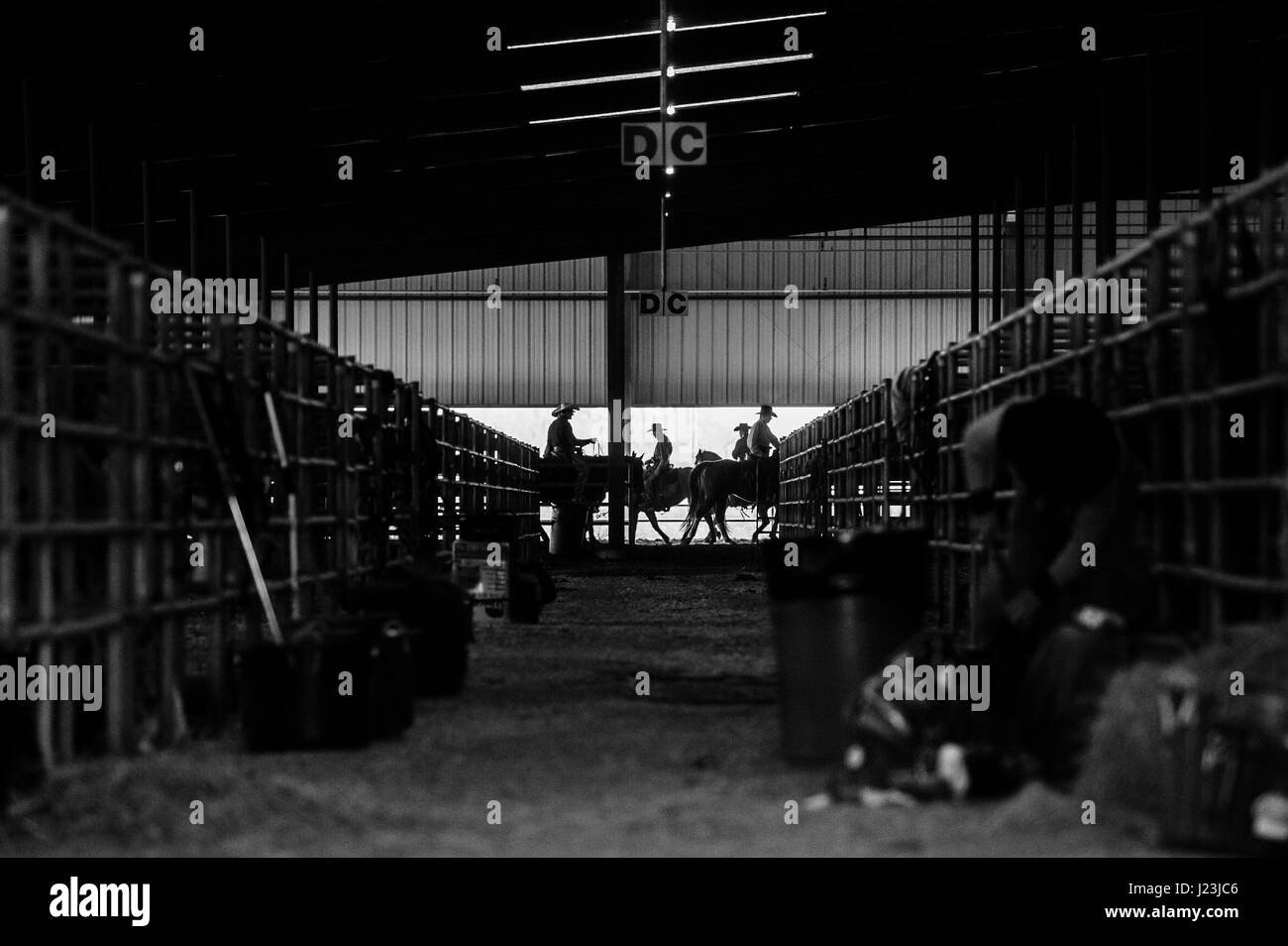 Salado, Texas, USA. Cowboy Mounted Shooting Event Texas. Riders silhouette before the competition during the warmup. - Stock Image