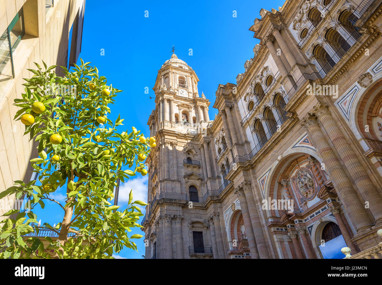 Bell tower and ornate facade of Malaga cathedral. Andalusia, Spain - Stock Image