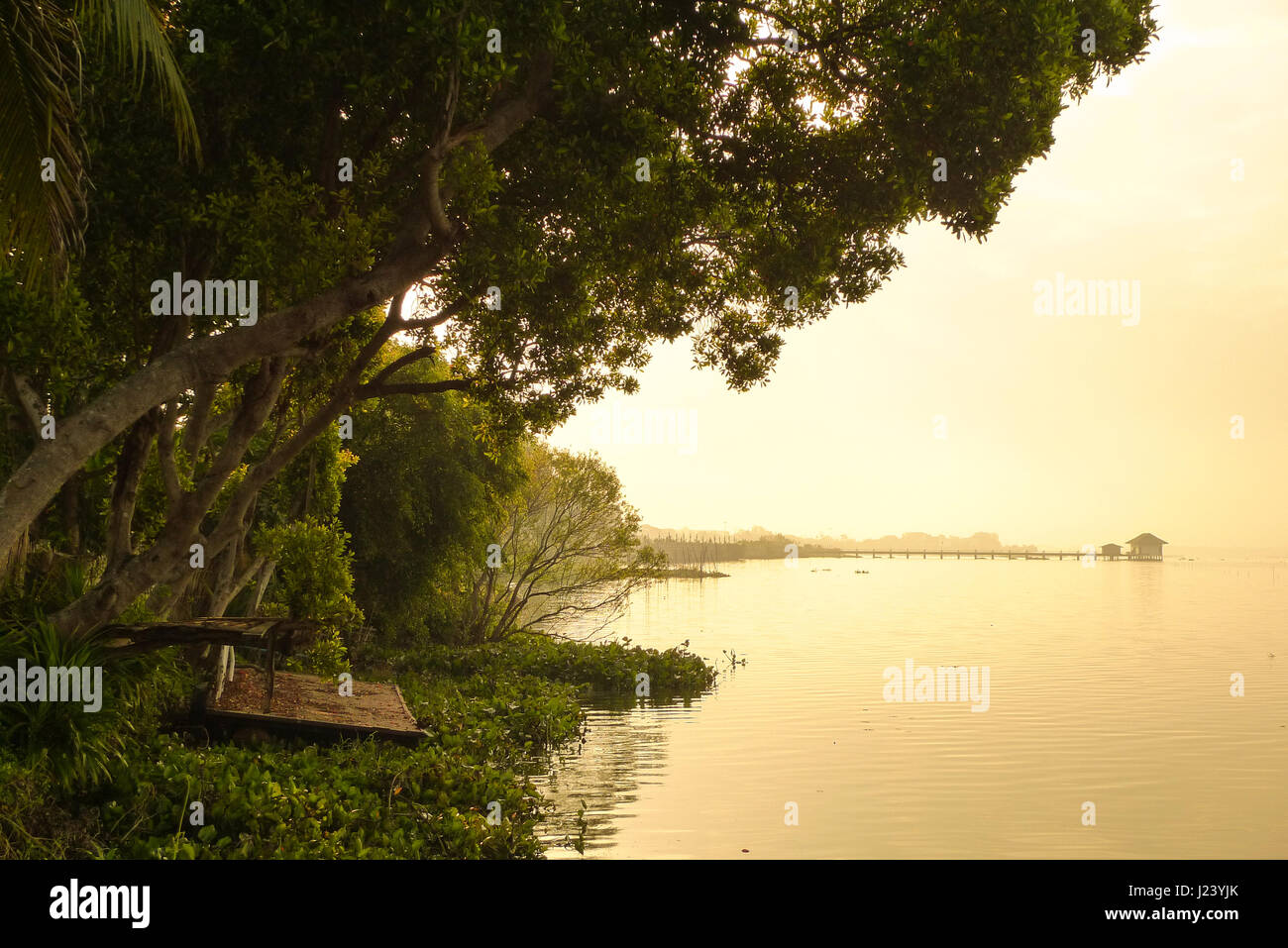 Countryside landscape,Thailand travel scenic,Old waterside on the lake,Warm tone color and selective focus - Stock Image