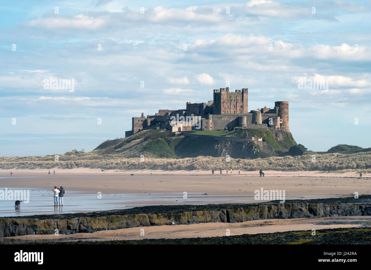 Bamburgh Castle Northumberland, England, Great Britain, UK - Stock Image