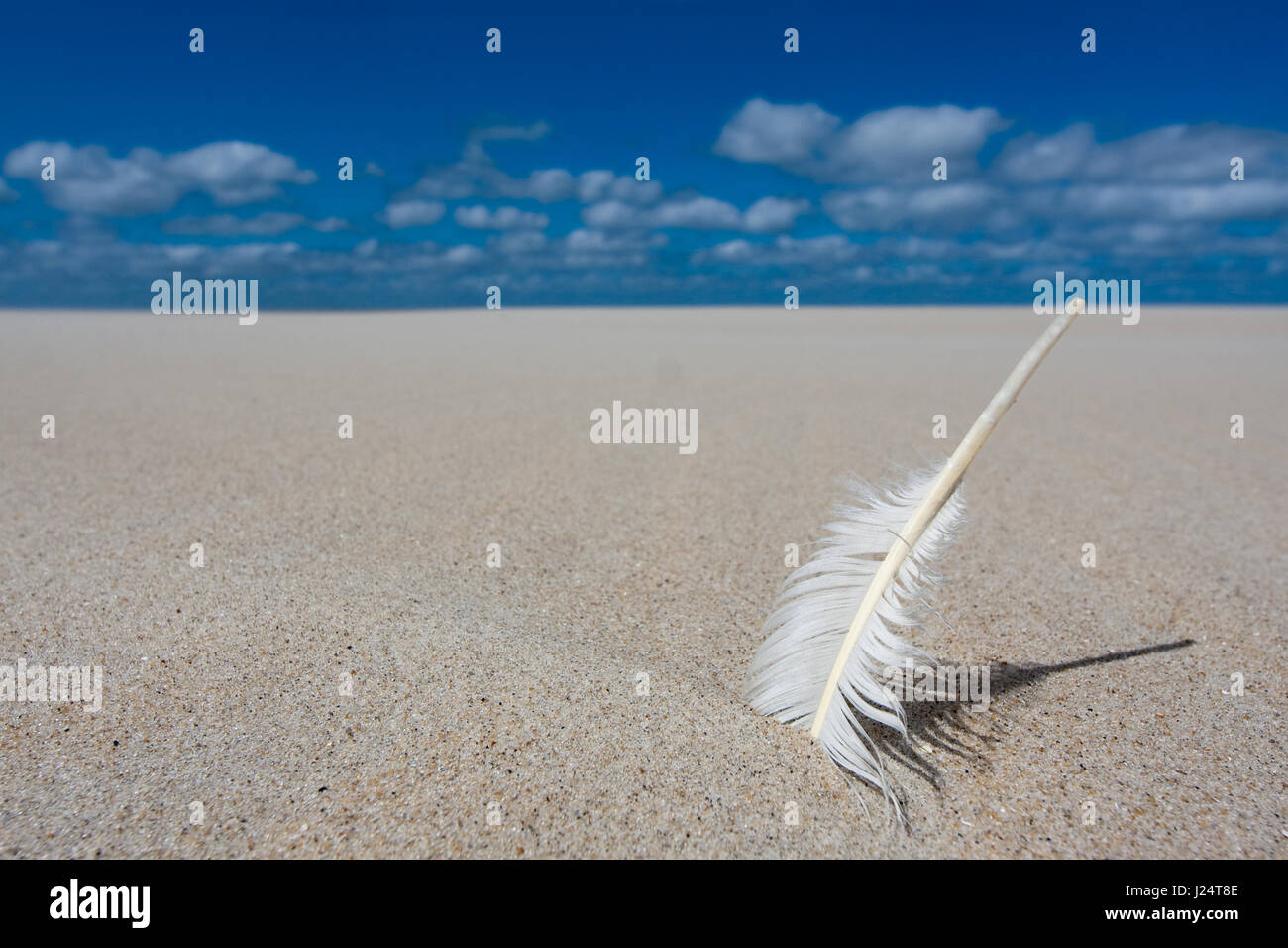 A white feather sticking in sand of a flat deserted landscape. - Stock Image
