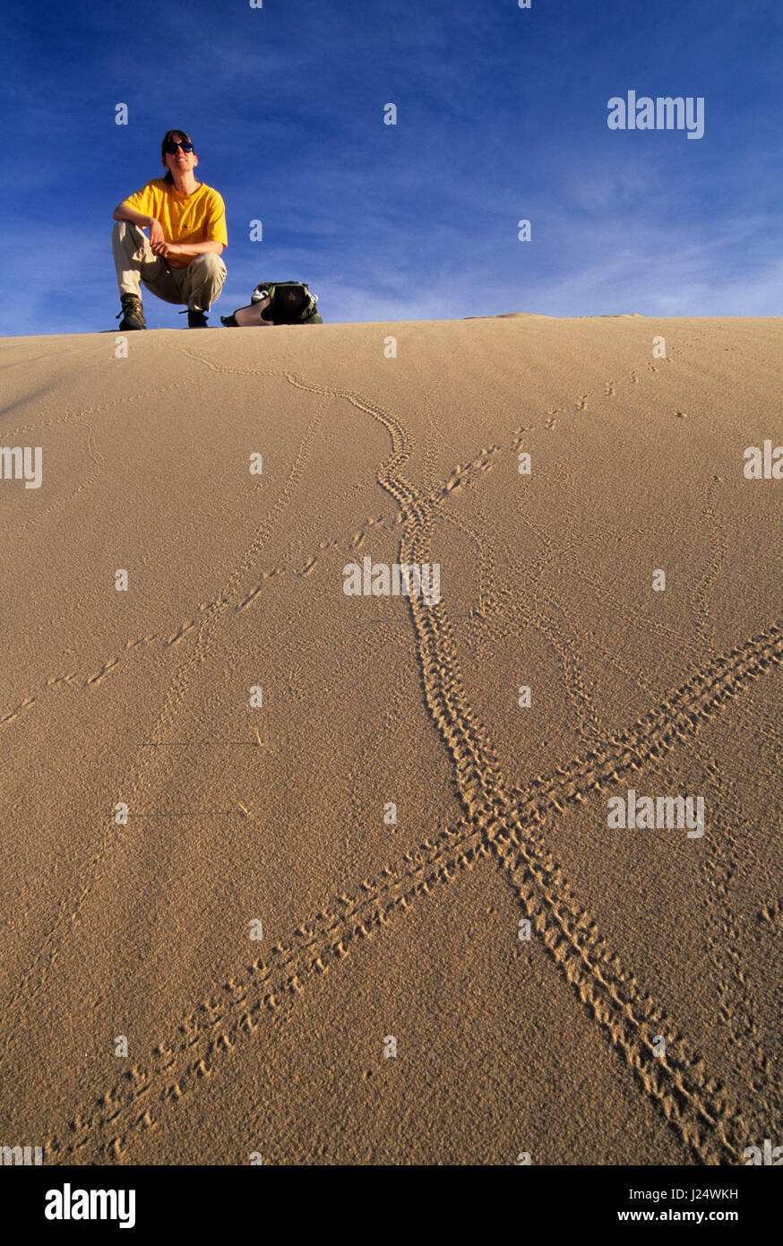 Kelso Dunes tracks, Mojave National Preserve, California Stock Photo