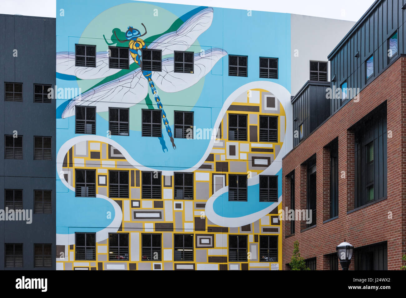 Dragonfly wall mural at The Local on 14th in Midtown Atlanta, Georgia, USA. - Stock Image