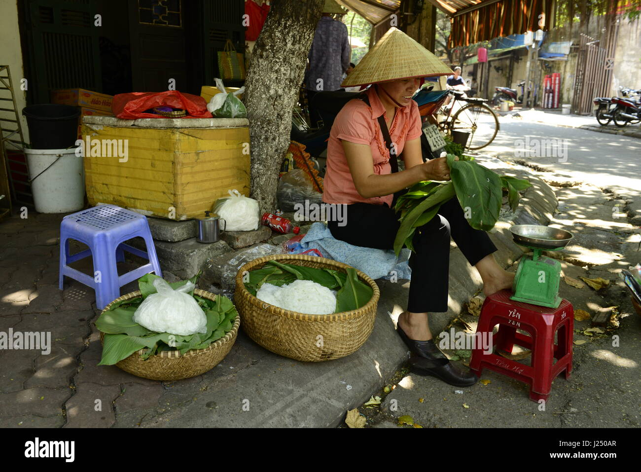 A Vietnamese woman selling traditional rice noodles ( Bún ) in Hanoi's old quarter. - Stock Image