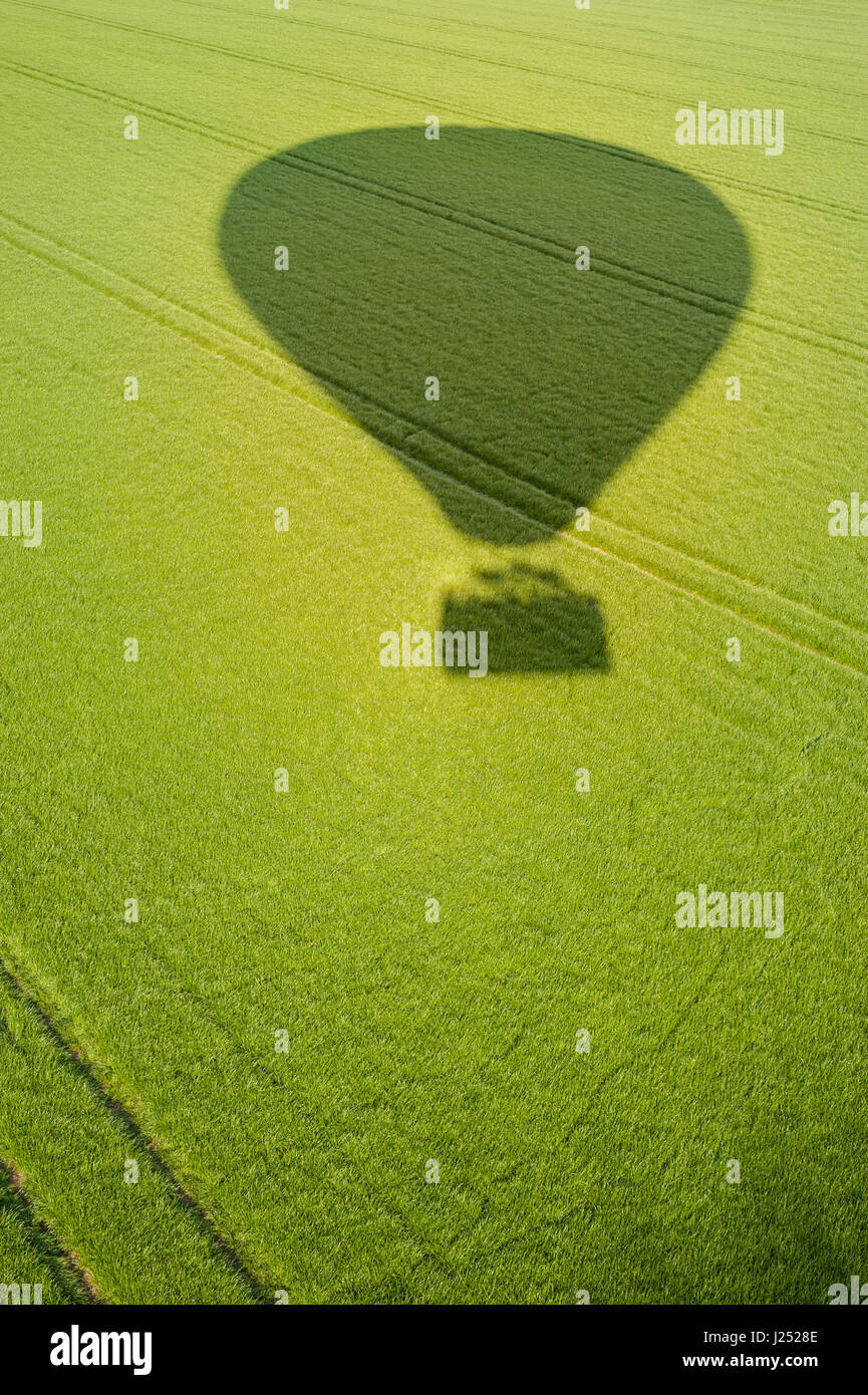 HOT AIR BALLOON shadow / silhouette against green grass fields - Stock Image