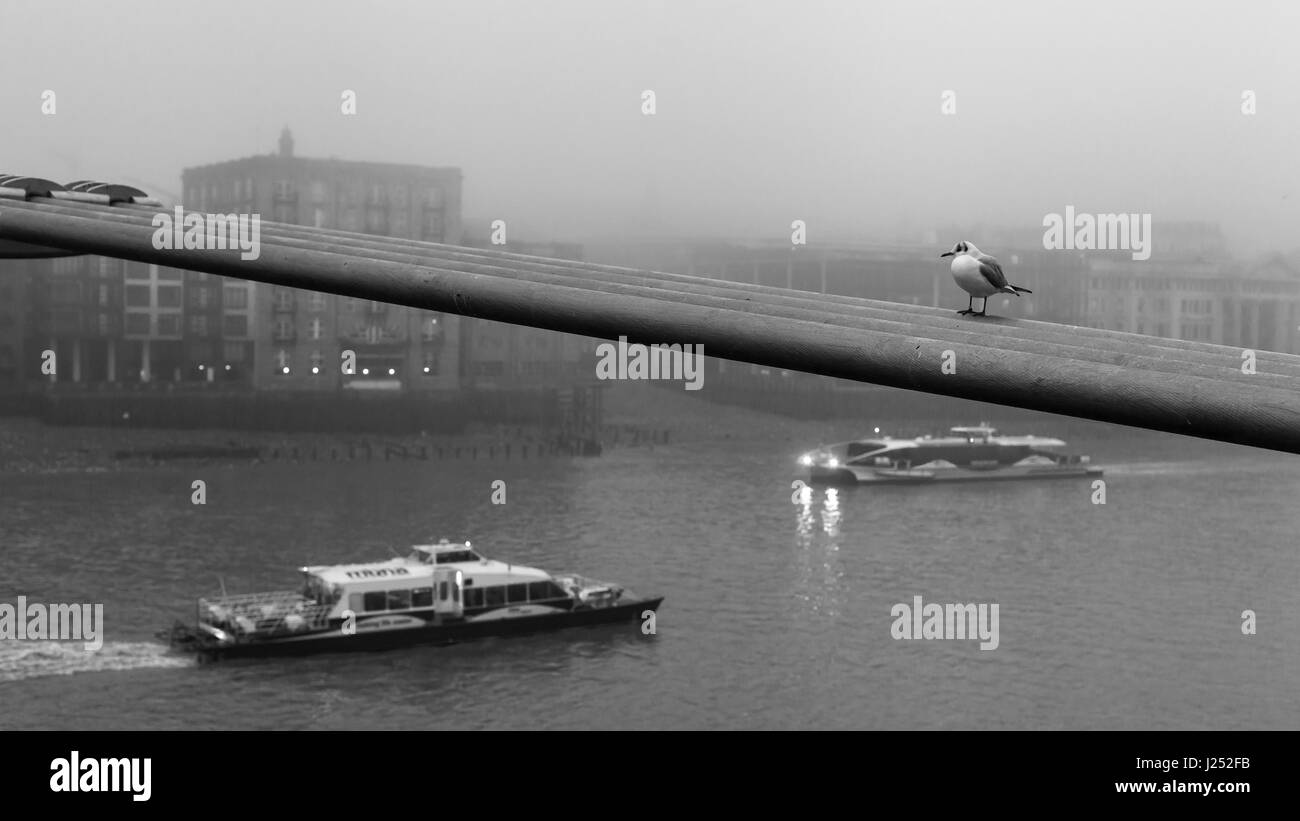 Thames (Docklands) on a Foggy Day - Stock Image