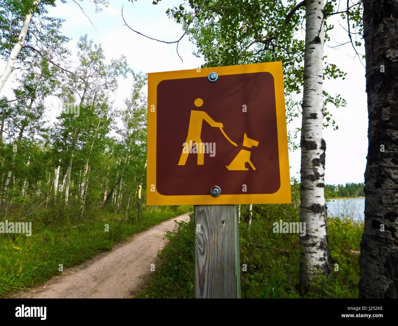 Dogs Must Be Kept on Leash On a Hiking Trail. - Stock Image