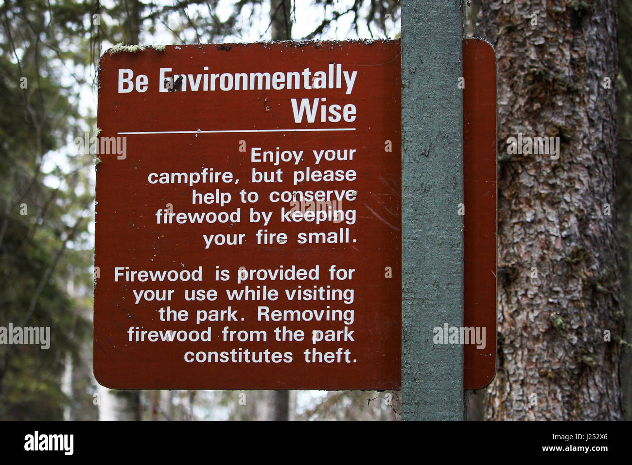 Be Environmentally Wise sign asking to conserve wood. - Stock Image