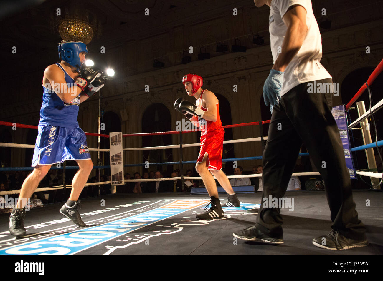 White Collar Fight Club, white-collate boxing event at Stratford Town Hall organised by London-based City Warriors - Stock Image