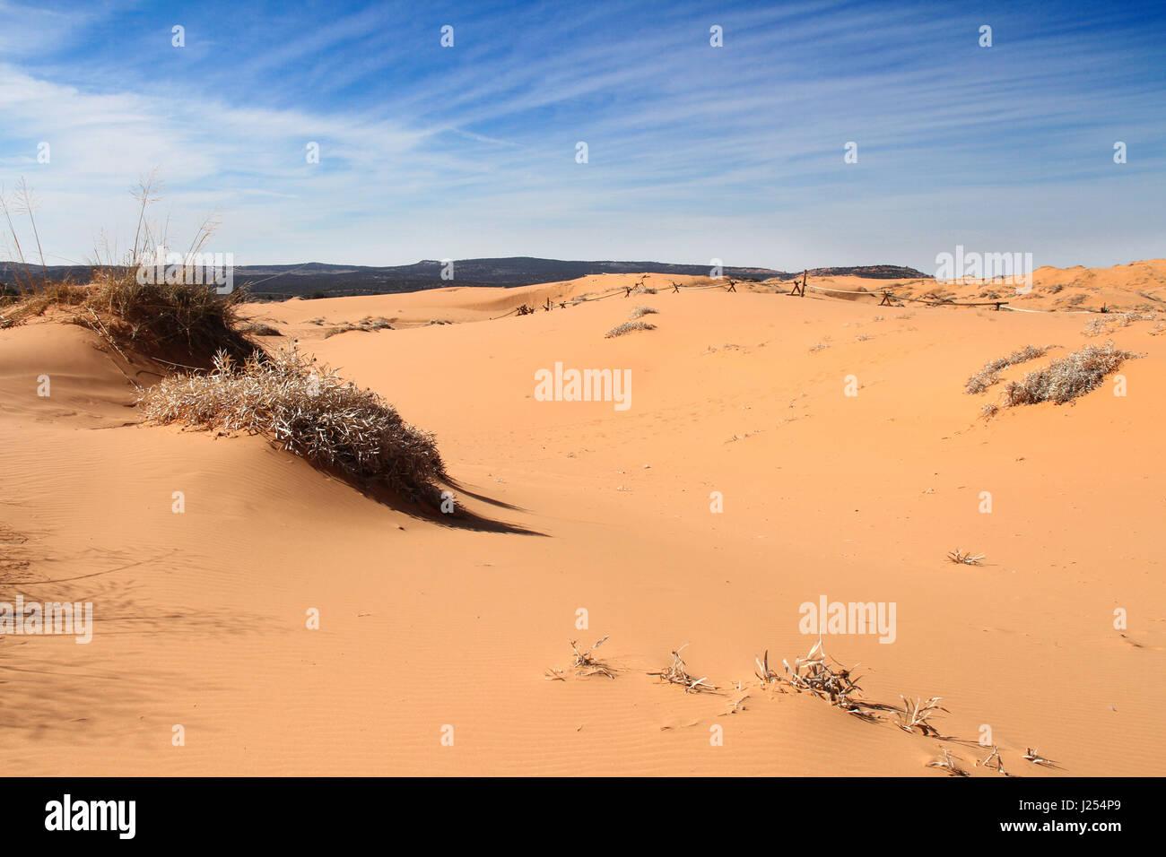 Painted Desert Arizona Red Sand WIlderness - Stock Image