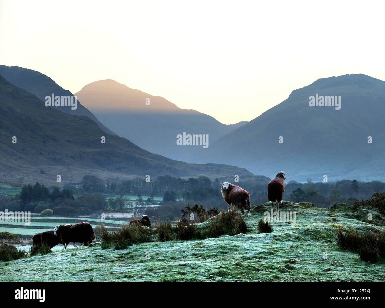 Sun rising on a frosty spring morning in the Englsh Lake District, Wastdale, Cumbria - Stock Image