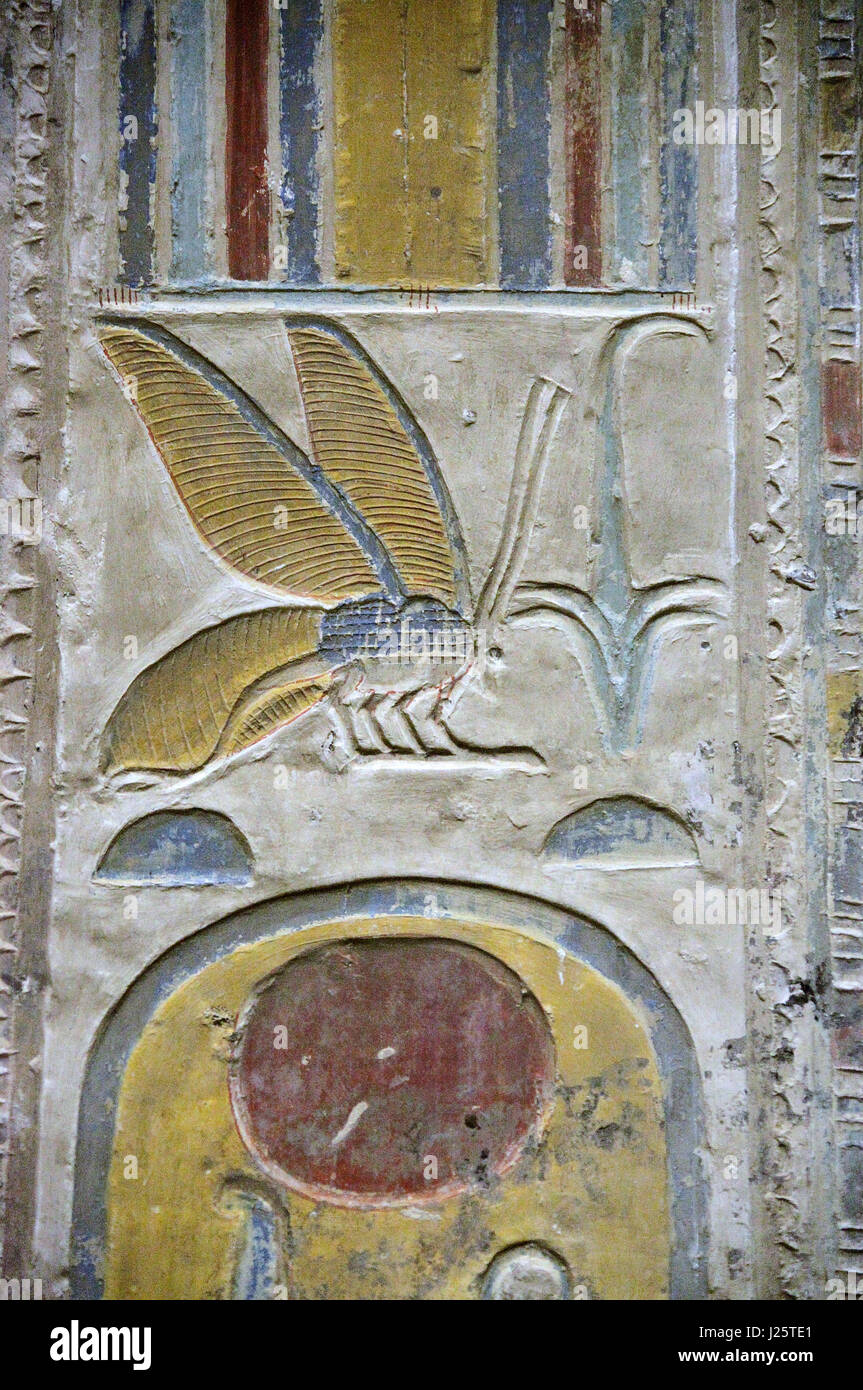 Painted hieroglyph showing the depiction of a bee at Abydos Temple - Stock Image