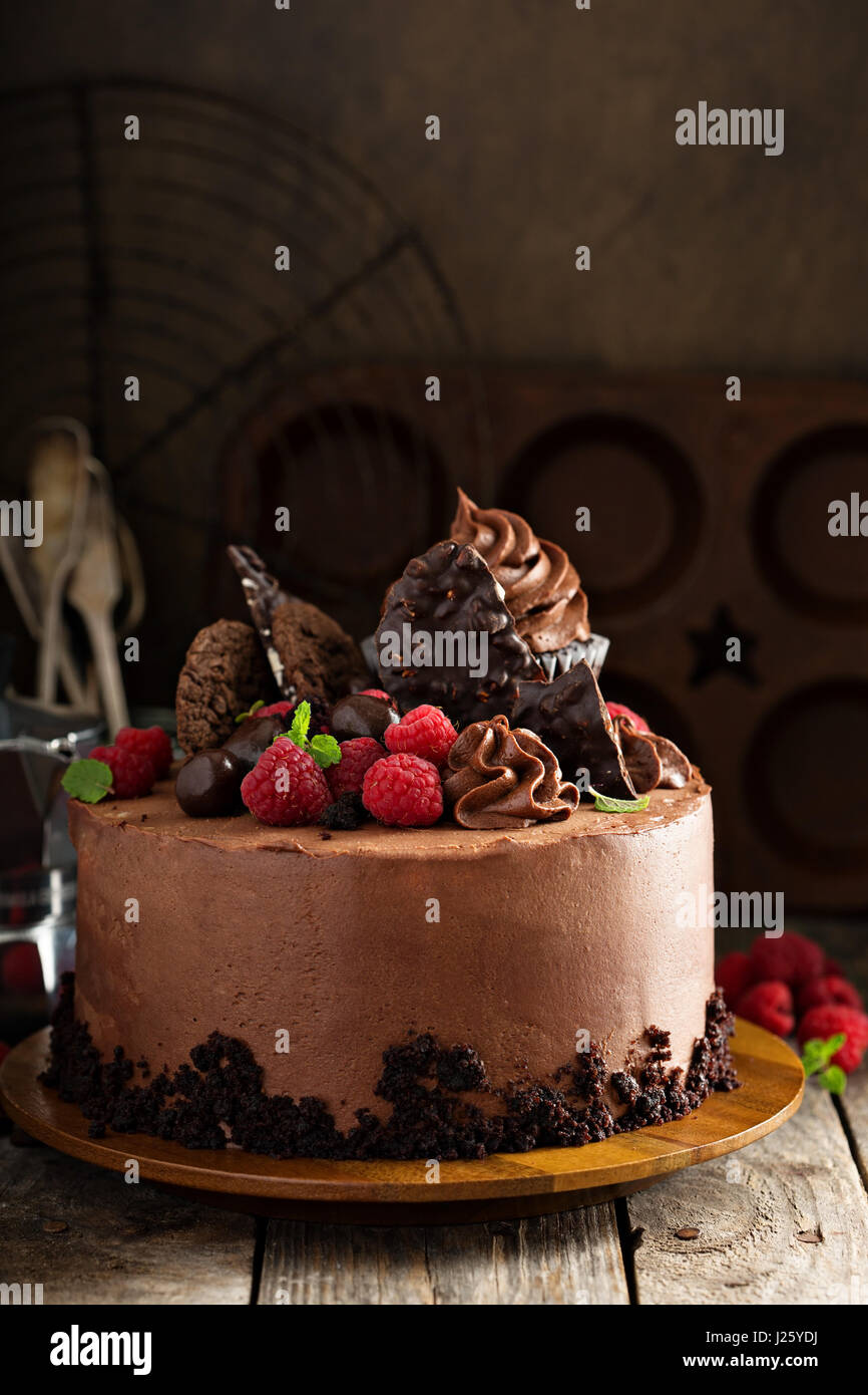 Chocolate cake with ganache frosting, festive decorations and raspberry - Stock Image