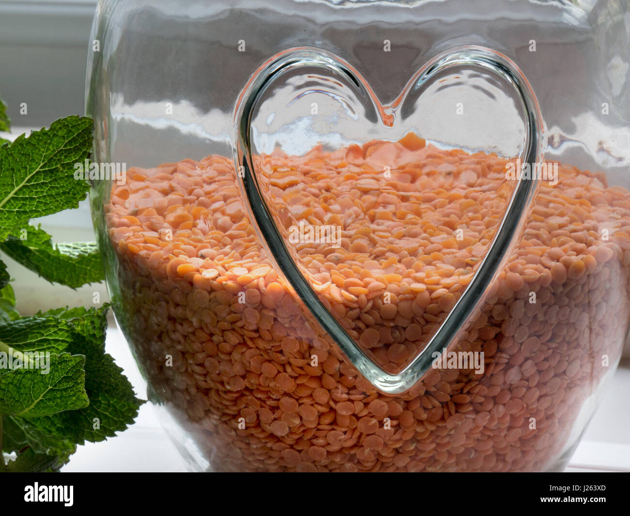 Glass jar with healthy heart motif relief, containing red Lentils, a healthy edible pulse Legume, with sprig of - Stock Image