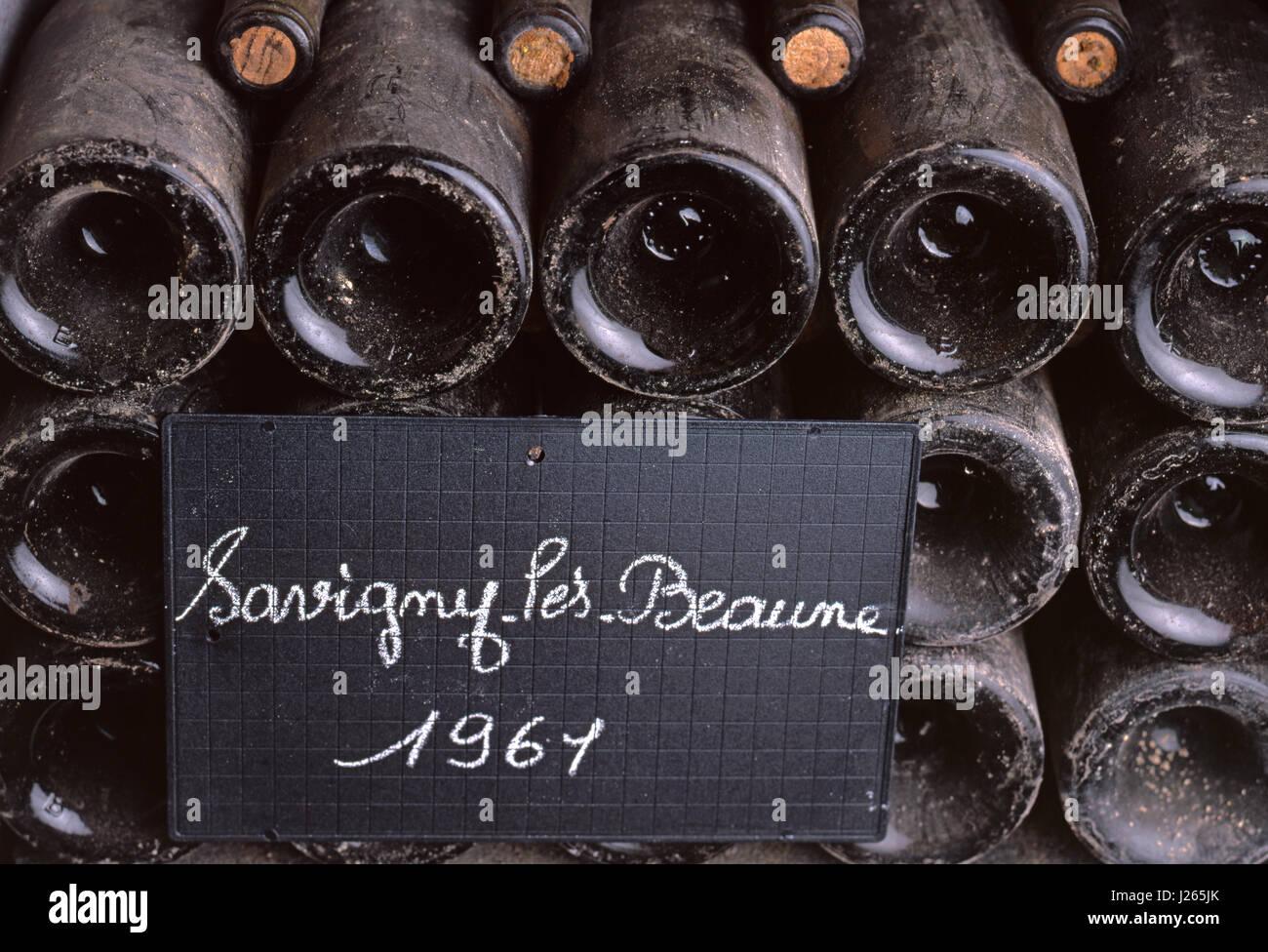 Blackboard plaque denotes bottles of 1961 Savigny-lès-Beaune in the cellars of Louis Jadot, Beaune, Côte - Stock Image
