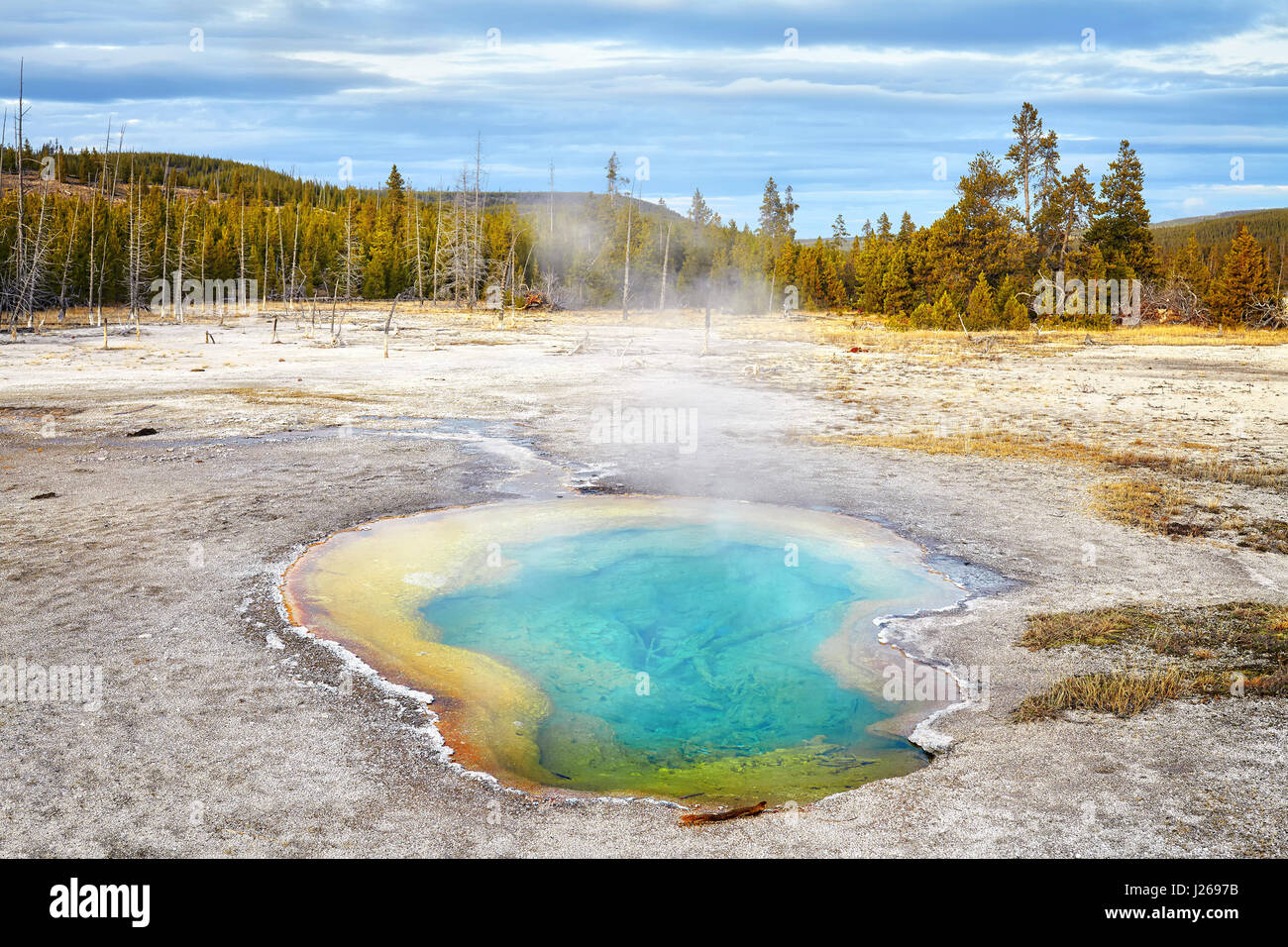 Yellowstone National Park, Wyoming, USA. - Stock Image