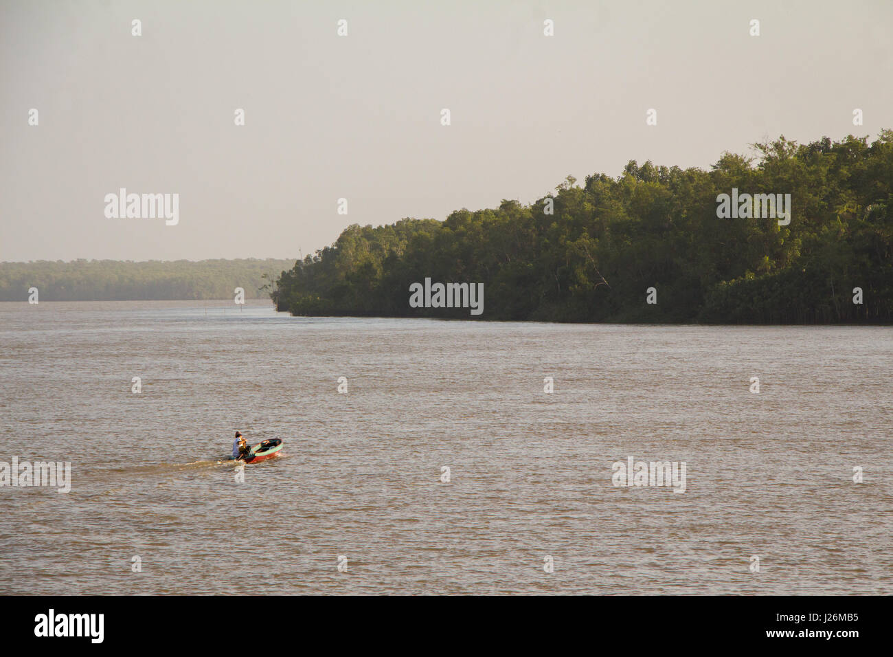 Man sails a 'rabeta', a traditional small brazilian motorboat, in the Amazon river. - Stock Image