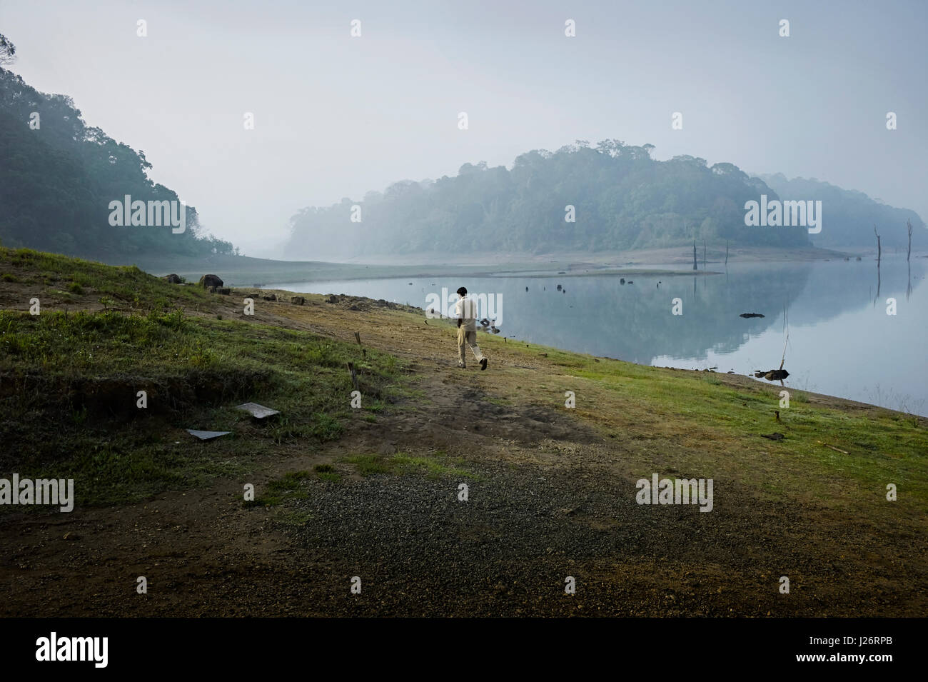 Periyar National Park in Thekkady,Kerala, India is located around the Mullaperiyar Dam's reservoir. - Stock Image