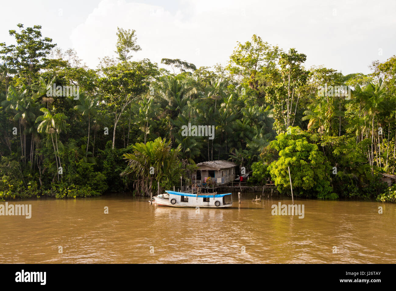 House of locals family lives by the Amazon river side, in Brazil. - Stock Image