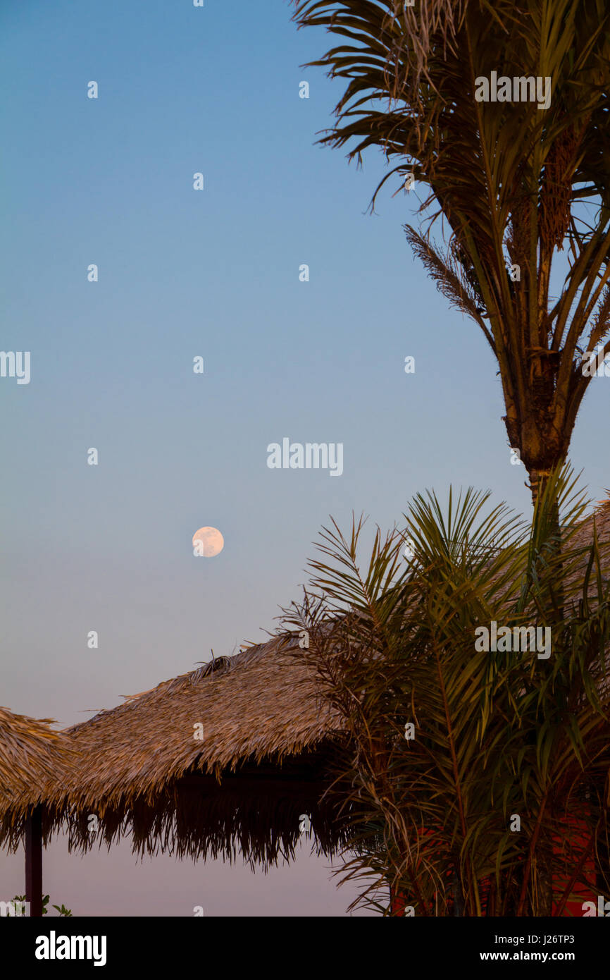 Full moon rises over straw shed, by the Amazon river, in Alter do Chao, Brazil. - Stock Image