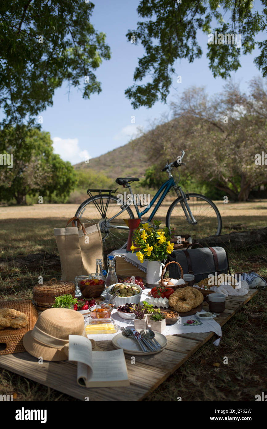 A picnic scene in the countryside, with a bike and fresh foods laid out - Stock Image