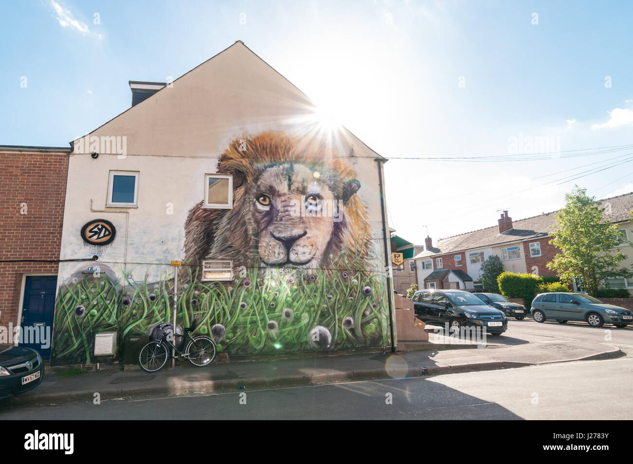 Lion mural on wall in East Oxford, United Kingdom Stock Photo