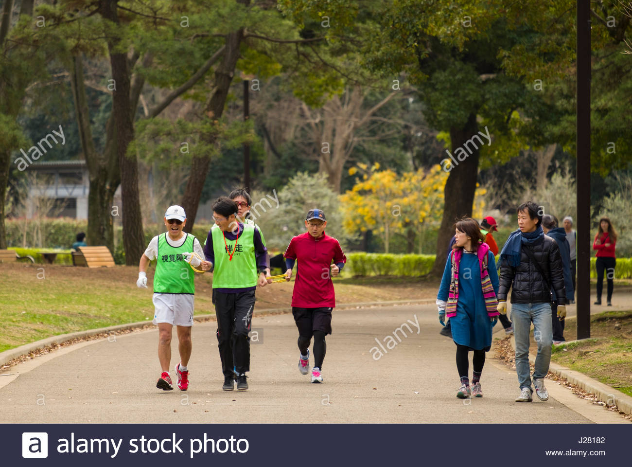 Man leading vision impaired man on a run by guiding him with a loop of cord they both hold in Yoyogi Park, Shibuya, - Stock Image