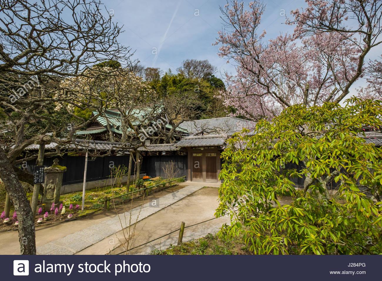 Shōkozan Tōkei-ji Buddhist temple and a former nunnery, Yamanouchi, Kamakura, Kanagawa Prefecture, Honshu, Japan - Stock Image