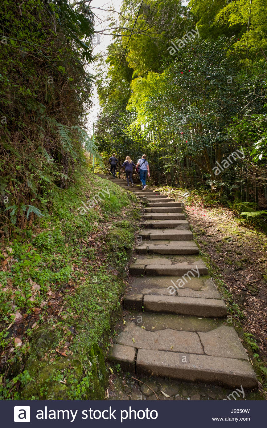 People walking up stone steps on the Daibutsu Hiking Trail, Yamanouchi, Kamakura, Kanagawa Prefecture, Honshu, Japan - Stock Image
