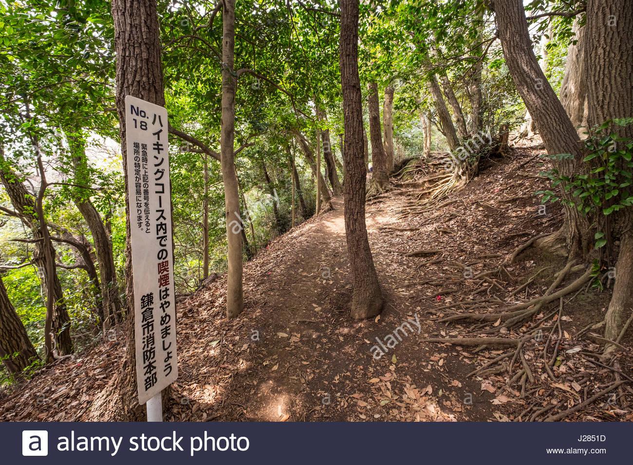 The Daibutsu Hiking Trail, Kamakura, Kanagawa Prefecture, Honshu, Japan Stock Photo