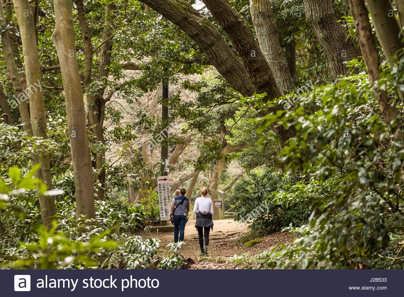 People walking on Daibutsu Hiking Trail near Genjiyama Park, Kamakura, Kanagawa Prefecture, Honshu, Japan - Stock Image